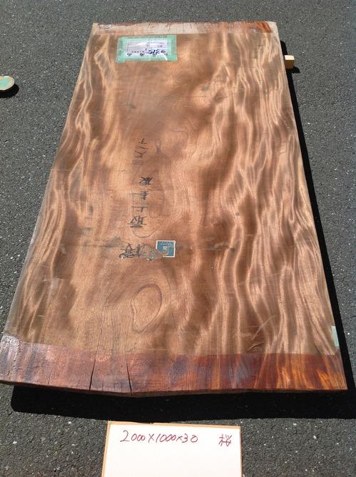 桜(表)H26.jpg