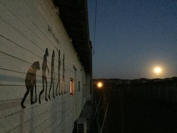 満月とサル2.jpg