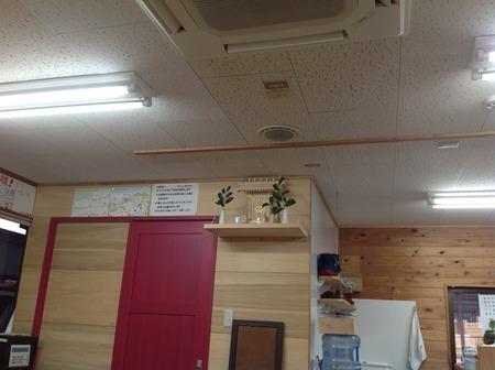 神棚 榊.jpg